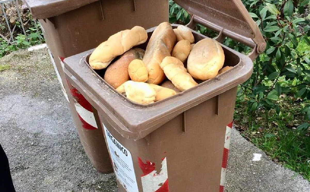 senigallia disoccupato chiede pane