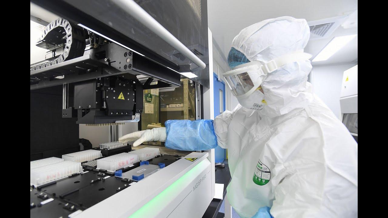 Coronavirus vaccino, un cerotto di 1,5 centimetri potrebbe s