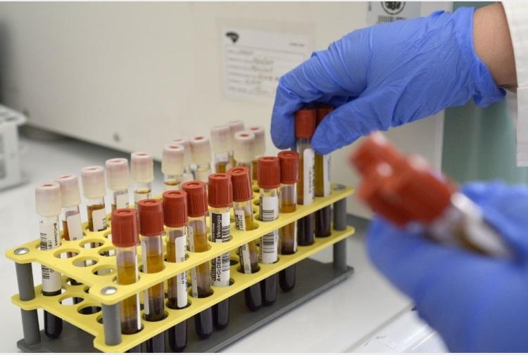 Genoma virale puglia
