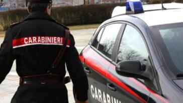 Torino omicidio