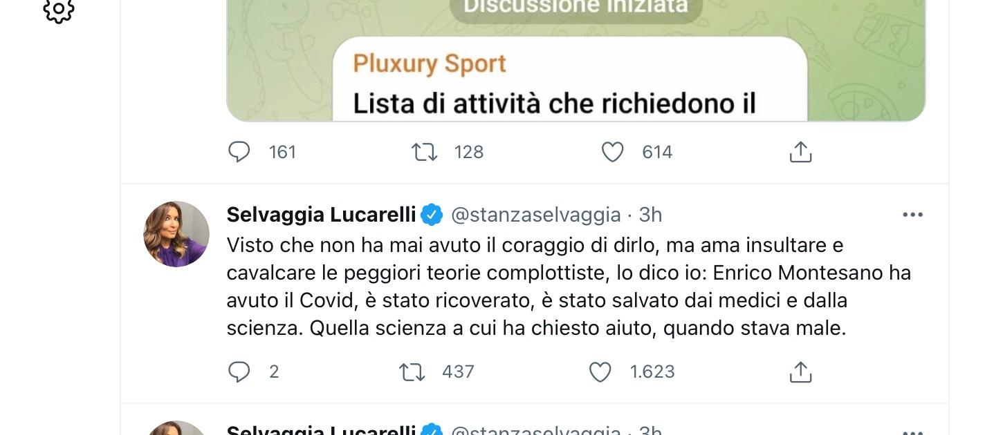 Selvaggia Lucarelli accusa Enrico Montesano