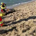 Bibione uomo morto annegato