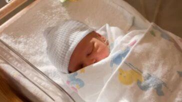 Genova neonata lasciata