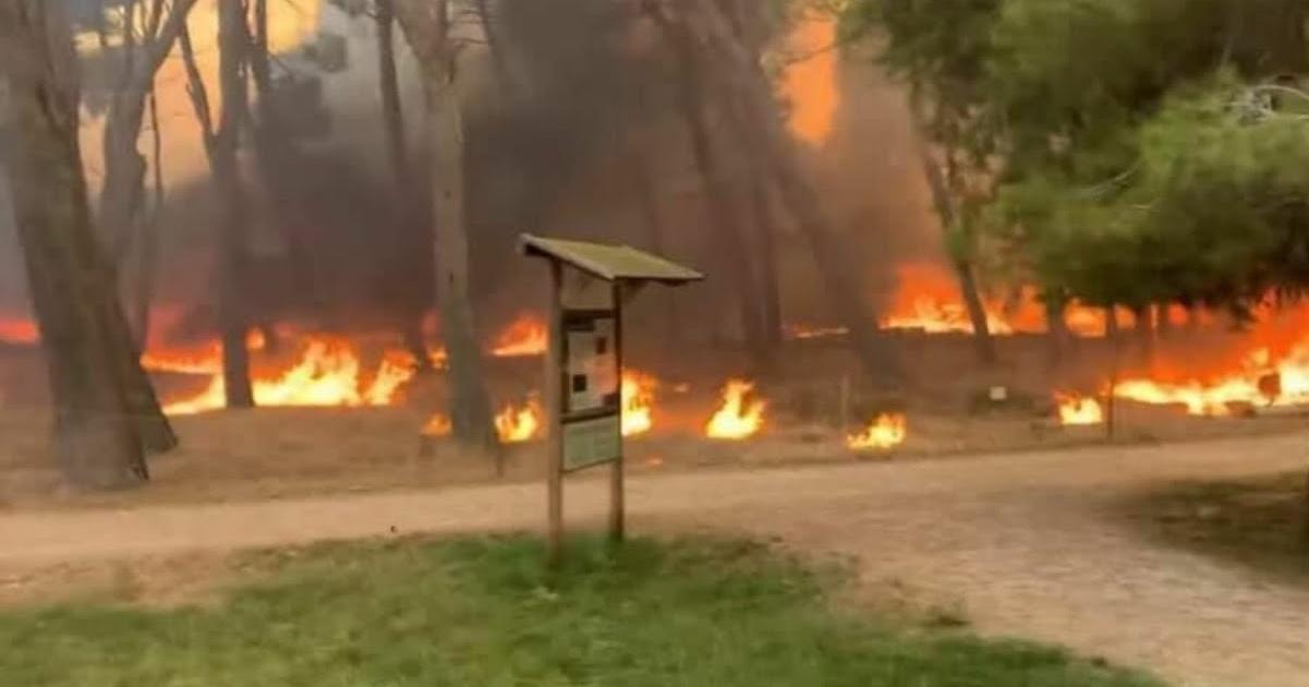 Salento incendio Porto Badisco
