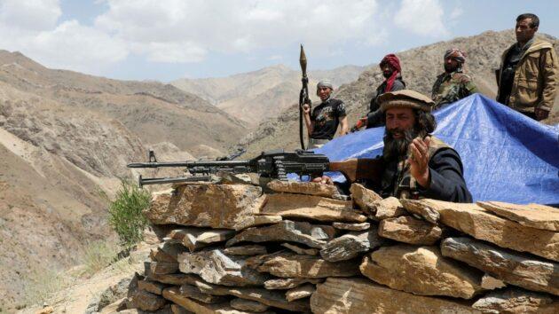 talebani chi sono
