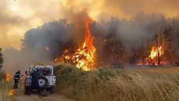 Incendio Latina