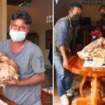 Vomito di balena, pescatore ne trova 30 kg e diventa milionario