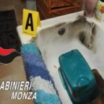 lambiate Monza