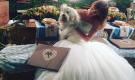 Alessia Cammarota Instagram: le prime foto condivise sul nuovo profilo ufficiale